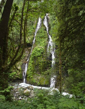 feature: Feature Show Falls in the northern Cascade mountains