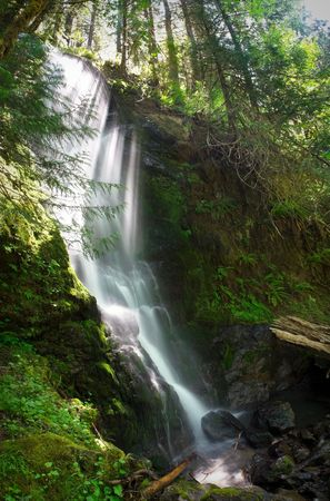 temperate: Merriman Falls in the Quinault temperate rainforest area of Olympic National Park Stock Photo