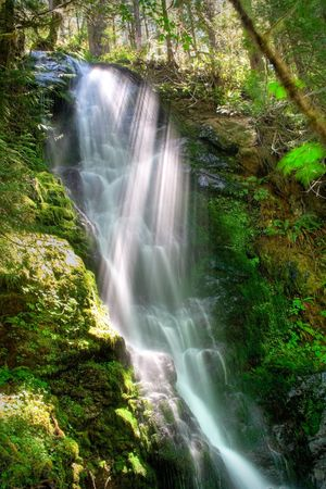 Merriman Falls in the Quinault temperate rainforest area of Olympic National Park Stock Photo