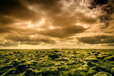 The midnight sun above moss covered lava rocks in south Iceland