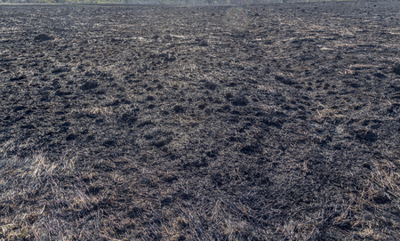 The charred remains following a prairie fire in Wisconsin