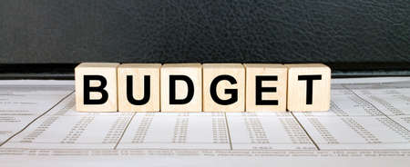 Word Budget made with wood toy blocks on financial tables. Business concept