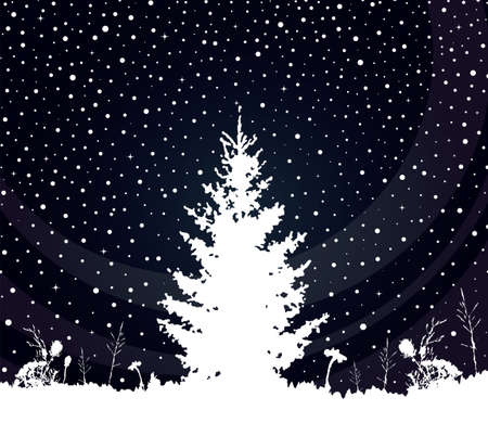 spruce in the snow, winter landscape. Vector