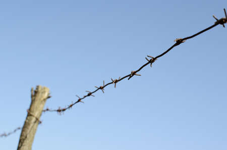 Barbed wire on a background of blue sky. photo