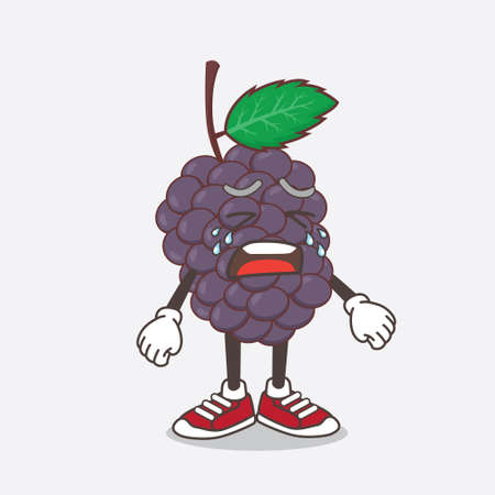 An illustration of Mulberry Fruit cartoon mascot character with crying expression Illustration