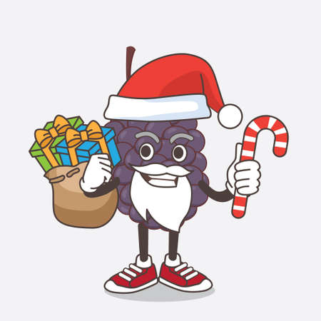 An illustration of Mulberry Fruit cartoon mascot character in Santa costume with candy Çizim