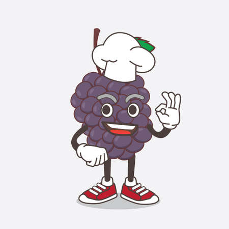 An illustration of Mulberry Fruit cartoon mascot character in a chef dress and white hat