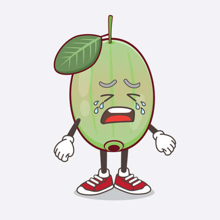 An illustration of Ogeechee Lime cartoon mascot character with crying expression Illustration
