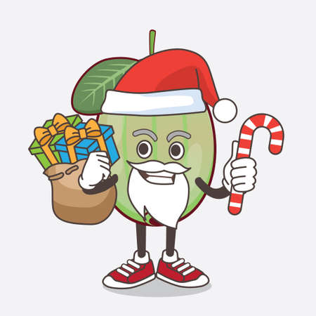 An illustration of Ogeechee Lime cartoon mascot character in Santa costume with candy