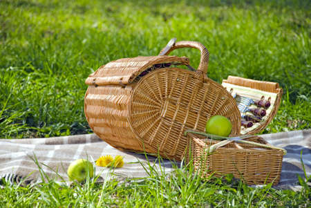 basket for the picnic with dandelions on the plaid  photo