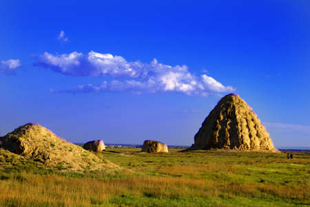 ruling: Imperial Tombs of Western Xia was call Pyramids of chinese, nearby Yinchuan City china . The Western Xia had ten ruling emperors over a 190 year period before 1227 in china