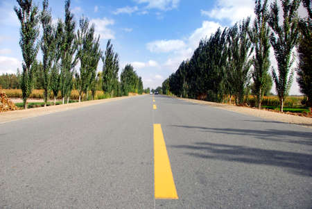 Empty highway,country road(2) Stock Photo - 3806171