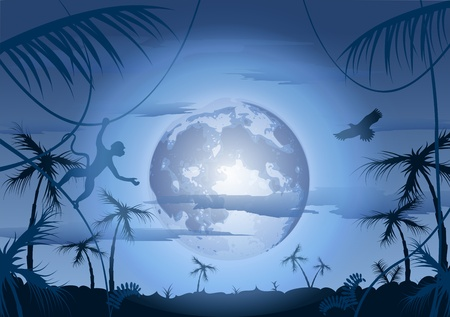 Night in jungle and moon