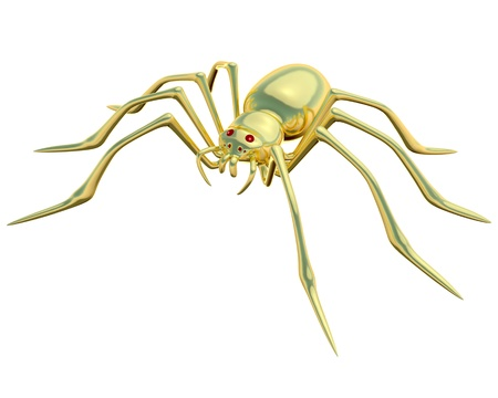 Gold spider on the white background