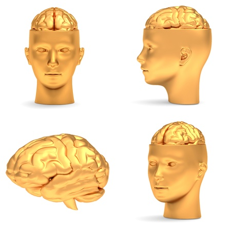 projections: Gold head in three projections and brain, isolated over white.
