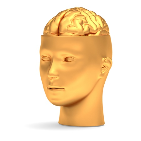 Gold brain in gold head is opened photo