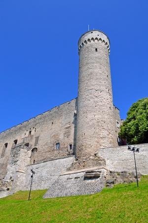 Toompea tower in summer day. Tallinn, Estonia.