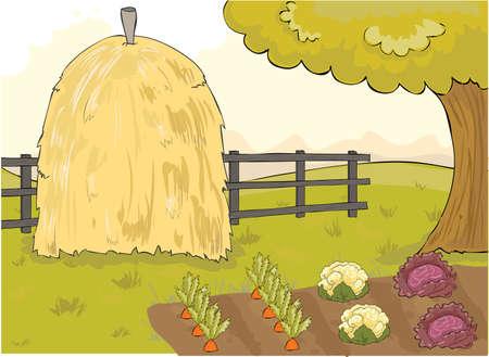 vegetables garden Illustration