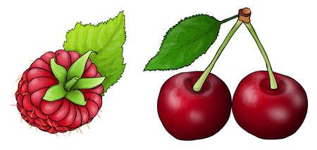 red fruit. Raspberry and cherries