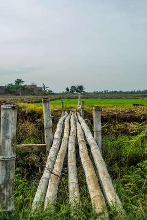 Bamboebrug - Jepara