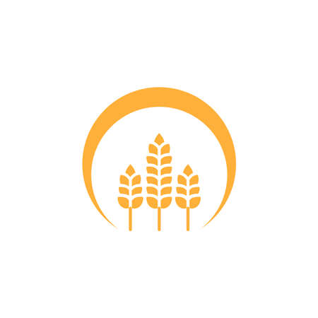 Wheat or barley ears. Harvest wheat grain, growth rice stalk and whole bread grains or field cereal nutritious rye grained agriculture products ear symbol. laurel vector icon. Isolated vector icon