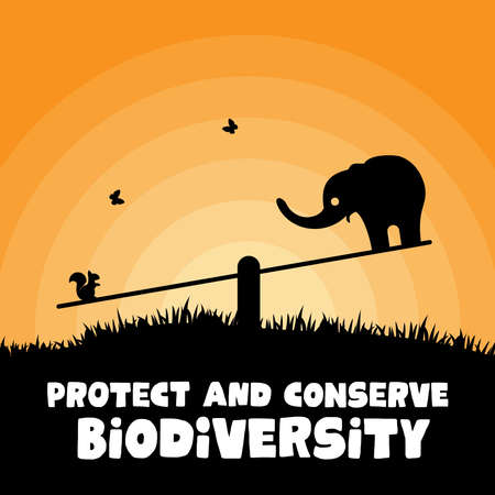 Design for celebrating world environment day - biodiversity theme with elephant and squirrel 일러스트