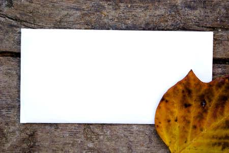 blank paper on wood
