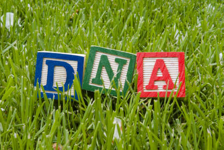 dna letters on the grass Stock Photo