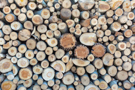 Firewood pile stacked chopped wood trunks, close-up wooden background 版權商用圖片