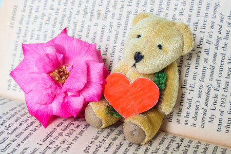 Bear Doll Hold Red Love Made By Paper Seat Lean on Book With Rose