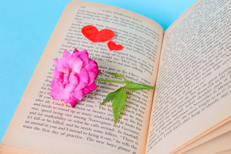 Rose And Red Love Shape Paper on Book. Pink Rose and Love Paper on Old Book With Blue Background.