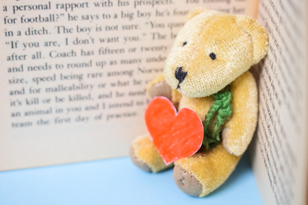 Bear Doll Seat Lean on Old English Book Hold Love Shape Red Paper