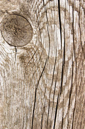 Grunge wood rough texture background with knot Stock Photo