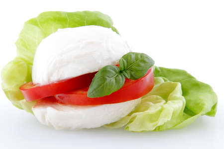 caprese with mozzarella cheese and tomato on white background photo