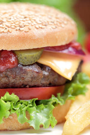 hamburger Stock Photo - 16916095