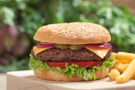 hamburger Stock Photo - 16916211