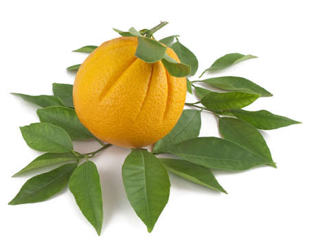 Orange with green leaves on a white background. Stock Photo