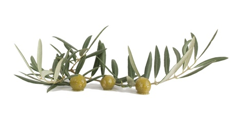 Olives with a branch and leaves on a white background Stock Photo