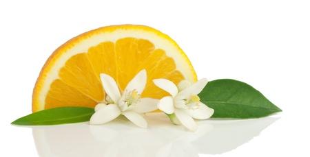 navel orange: Orange, flower and slice.  Isolated on a white background. Stock Photo