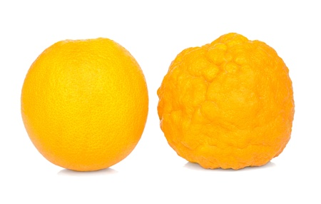 fatten: Orange healthy and sick. Comparison of forms. Isolated  on a white background. Stock Photo