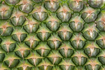 Pineapple skin close up