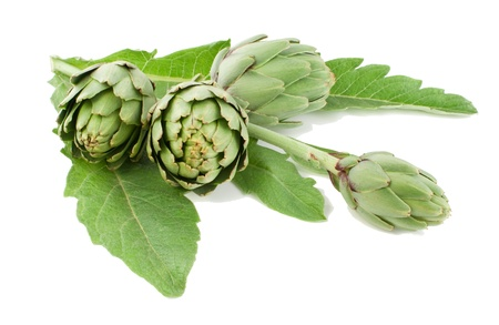 artichoke fresh with a stalk and leaves.isolated on a white background