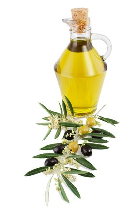 Olives, oil and a blossoming branch of an olive tree.Isolated on a white background