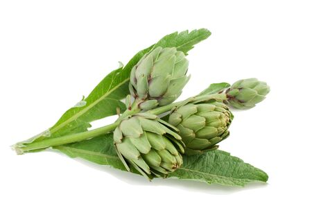 Artichoke fresh with a stalk and leaves.Isolated on a white background Stock Photo