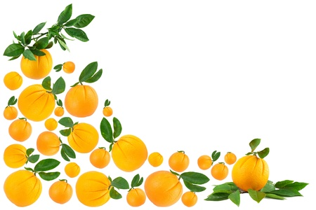 Oranges making a border isolated on a white background Stock Photo - 11618252