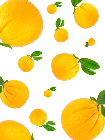 Orange  with green leaves   making a border Isolated on a white background photo