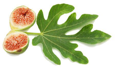 feuille de figuier: Ripe fresh fruit figue verte coupée moitié-moitié et feuilles sur fond blanc Banque d'images