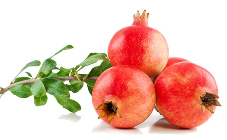 Pomegranate fruits on a branch with leaves on a white background Stock Photo