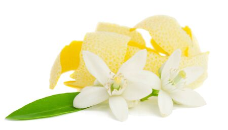 Bloem en citroen gedroogd schil Geà ¯ soleerd op een witte achtergrond