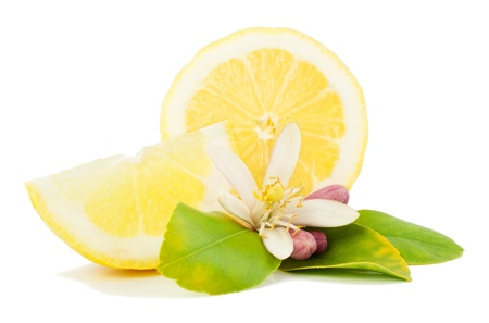 Lemon, leaf, flower and slice  Isolated on a white background